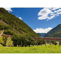 Trenino Bernina in Primavera